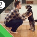 Pets at Home: 6 Ideas to Make Your Home Pet-Friendly